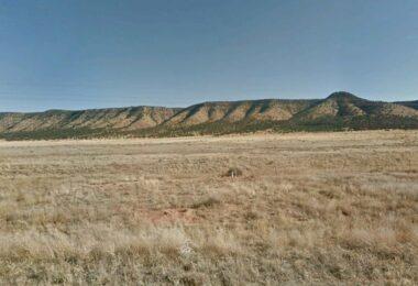Bearclaw Road, Seligman, AZ 86337