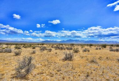 Kanyr Road, Dolan Springs, AZ 86441