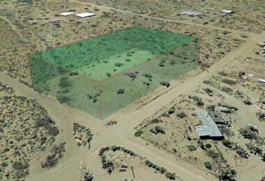 Squaw Drive, Dolan Springs, AZ 86441