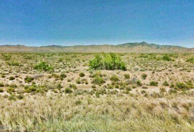 Cibola Road, Golden Valley, AZ 86413