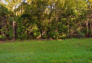 14th Track, Live Oak, FL 32060